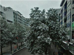 2018年第一场雪(●―●)