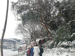 2018年底的大雪,覆�w了迪歌整��朋友圈