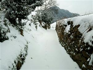 《登山踏雪》黔东卧龙美景(多图)