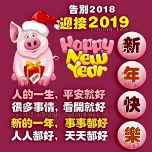 喜看2019年新年的祝福