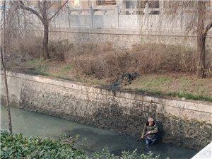 这么冷的天这位环卫工人在水中清理河道垃圾,让临泉的冬天不再那么寒冷!为这位老大爷点赞!