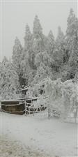冬天,你怎么能这么美,这么迷人