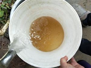这就是桃江得自来水!