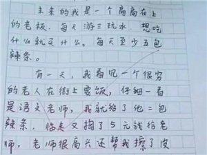 """来自一位小学生自述:""""未来的我"""""""