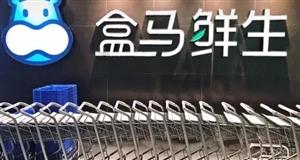 澳门龙虎斗网站招聘外卖配送员200名