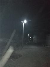 新农村新气象,俺村也按上路灯了
