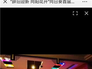 向日葵语言艺术学校,新年联欢会今天下午3点网上直播了!!!