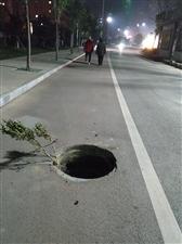 文峰路东湖南侧人行道窨井盖被车压掉了,行人和骑电车的一定要小心啊~低头看手机的更要注意了,轻则牙磕掉