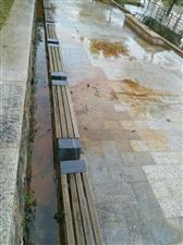 万生一号这边河道边的小路上哪里排出来的污水,怎么会从墙缝里流出来有点像化工废水很臭
