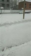 又下雪了!