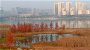 汉江河畔冬日暖色(下)