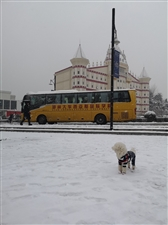 雪中的西亚斯