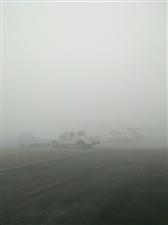今天雾大,大家出门注意安全!