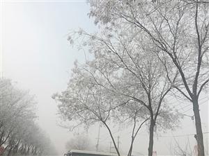 高邑雾浓腊月初八刘星