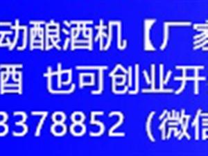 中国白酒白酒自动酿酒机【厂家直销】