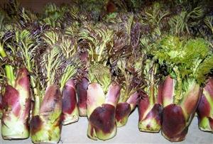系列养生食补一蔬菜篇(刺脑包)