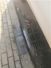 马路上的下水道堵了怎么办?