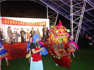 金沙国际娱乐官网一青年上了浙江卫视,把土家文化带出外省