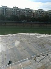 城区的河流岸边筑起了一个个观景台,这样可以近距离的观赏河水和水里的鱼了