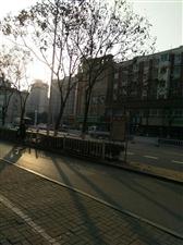 周六的早上太阳出来了
