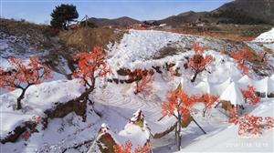 建平三家高山寺滑雪场