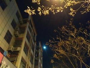 日月同辉的景象
