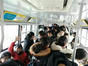 城内公交车车上人真多