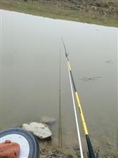 运气爆棚的一次钓鱼经历
