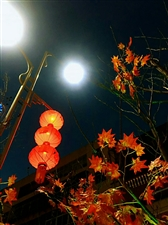 春节即将来临我在桥头等你回家过年