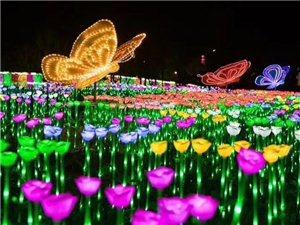滨州,美丽的夜