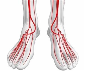 """手脚若出现2种迹象,就要小心了,血管可能""""堵""""得不轻了!"""