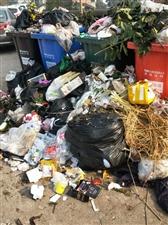 垃圾堆成山,臭气熏天,跟村长,支书都反应过了,难道我们这事就没人管了吗?