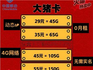 超��惠便宜4G鎏量上�W卡�砹�