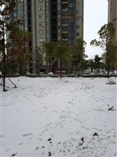2019年正月初四的一场大雪