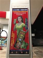 椰树椰汁辣眼睛广告实拍