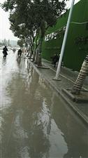 这动作是在搞文明城市吗?洒水车走过,路是被水冲干净些了,可苦了路两边行人,衣服上被溅上好多污水……