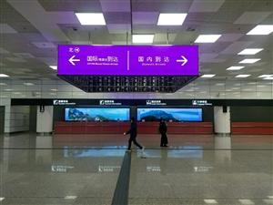 襄城县至新郑国际机场T2商务快车
