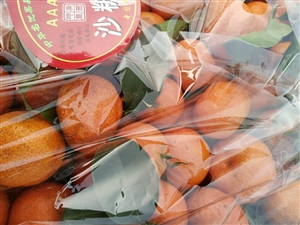 正宗砂糖橘到货1000件特价