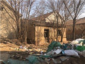 现在在滨州农村看到这种的房子越来越少了,这些房子也是一个时代的见证。下一代可能真的看不到了