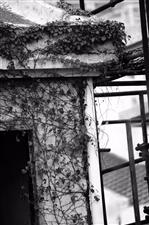 废弃的建筑工地