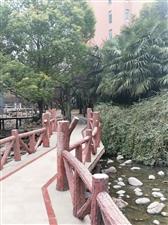 郑州某小区
