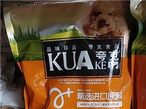 盘县城关宠物店