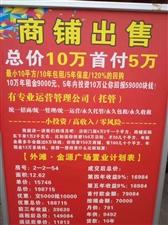松桃外滩金源购物中心一层商铺出售,十年出租五年保底,收益率最高,0风险……