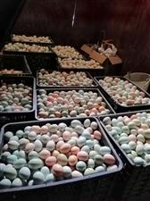新鲜散养土鸡蛋,需要的朋友联系微信同号18184508261