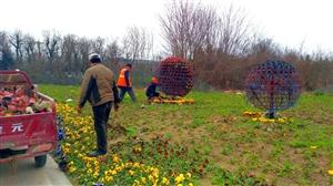 感谢威尼斯人网上娱乐平台园林工人的辛勤劳动!是他们把这个城市装扮得如此美丽。