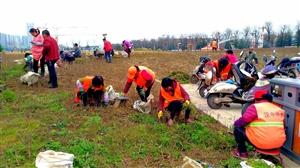 感谢汉中园林工人的辛勤劳动!是他们把这个城市装扮得如此美丽。