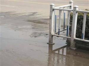 霍邱县大名城后街路口处,常年污泥臭水积累
