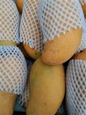 新鲜水果来了,实惠中,快来抢。