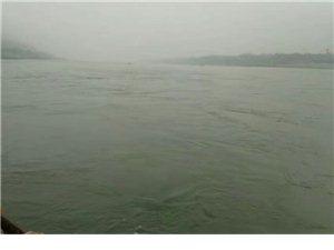 久违的蓝天白云用长江和沱江扯开了琴弦