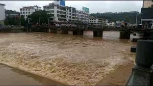 今春雨水有点猛,一来就是近个月,东江源头在寻乌,小河流水成江海!